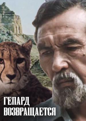 Гепард возвращается